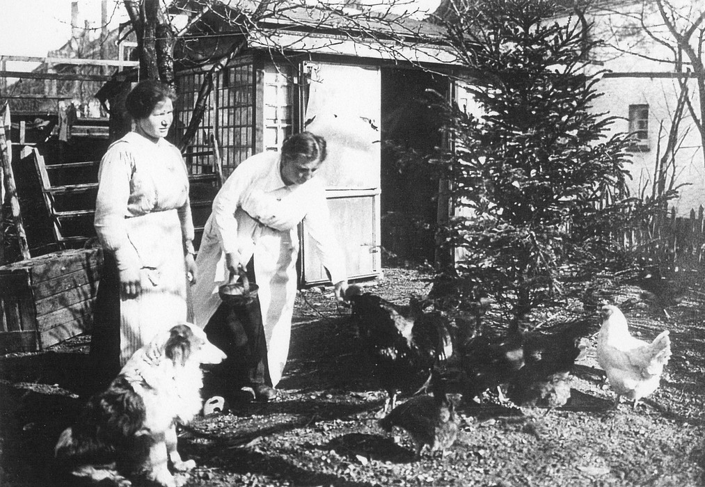 Hønsene fodres i haven ca. 1910 - Foto: Johan Weitzmann